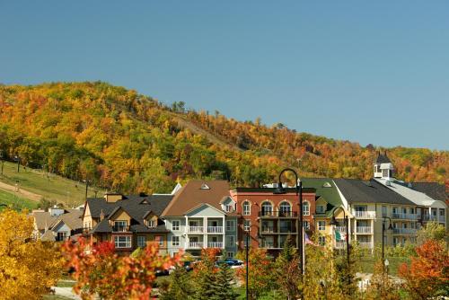 Blue Mountain Resort Mosaic Suites - Hotel - Blue Mountains