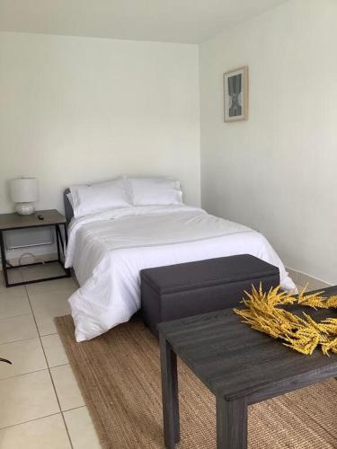 Hotel Motel Lauderdale Inn - image 9