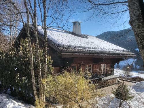 Les Jumelles - Chalet - Gstaad