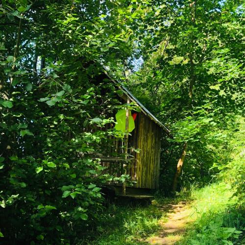Tiny house in the forest with river view