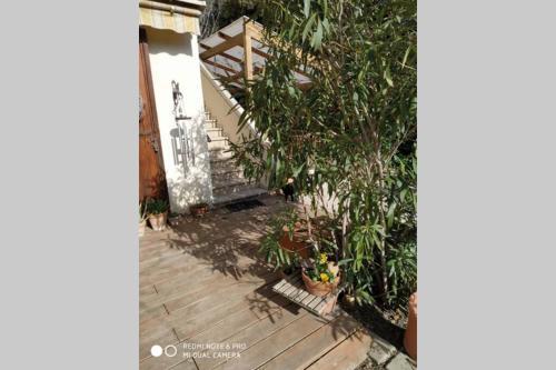 En ville avec un air de campagne - Location saisonnière - Arles