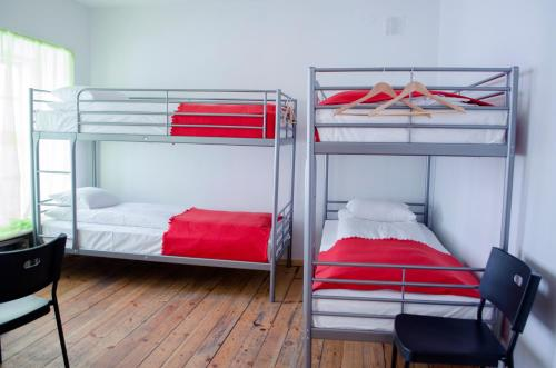 Einzelbett im gemischten 6-Bett-Schlafsaal (Single Bed in 6-Bed Mixed Dormitory Room)
