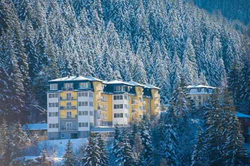 Appartements Sonnenwende by AlpenTravel - Accommodation - Bad Gastein