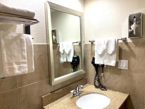 Rodeway Inn & Suites Fort Lauderdale Airport & Cruise Port - image 8