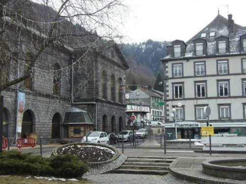 Appartement Mont-Dore, 2 pièces, 4 personnes - FR-1-415-9 Le Mont Dore
