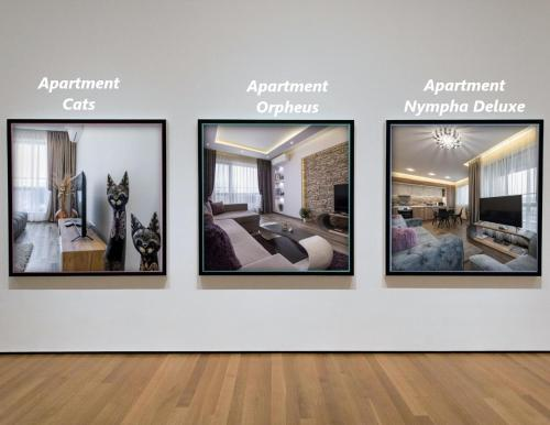 Apartment Cats