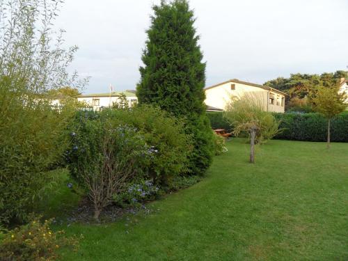 Ferienwohnungen Gartentraum & Sonnenstrahl photo 25