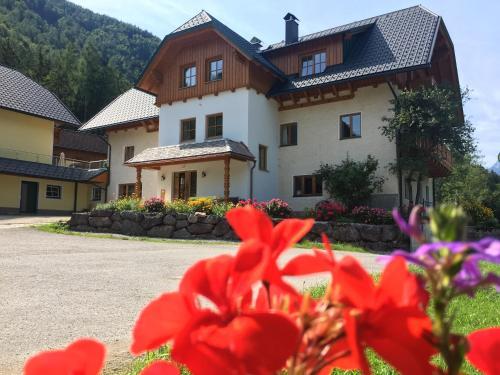 Ferienhof Rinnergut - Hotel - Hinterstoder