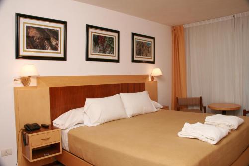 Фото отеля Intersur Hotel Colon