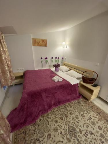Hotel Apartment Studio on Bucuresti 9/1