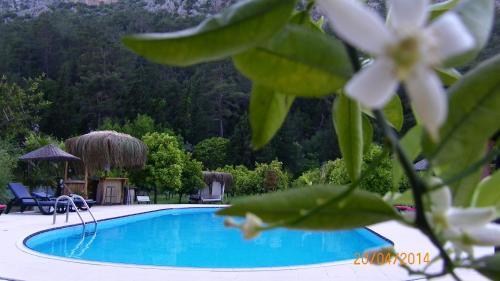 Cıralı Portalimo Lodge Hotel - Adult Only +12 indirim