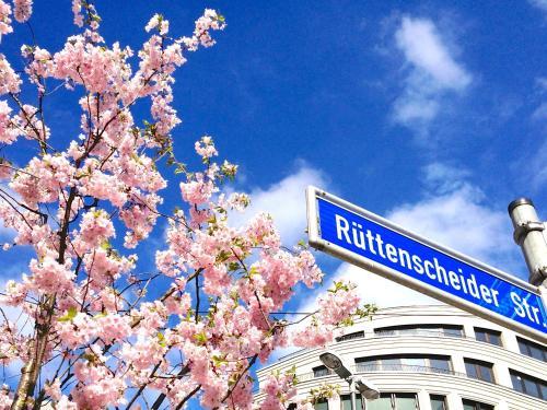 RüWo Living Apartments & Suites - Essen