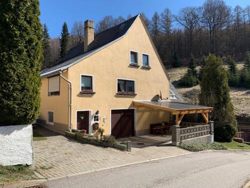 Erzgebirgsidyll am Glockenwanderweg - Apartment - Deutschneudorf