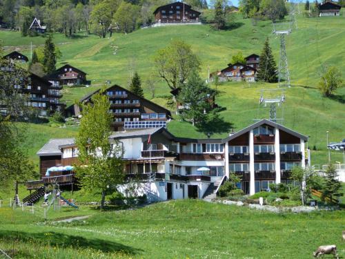 Hotel Restaurant Cristal - Braunwald