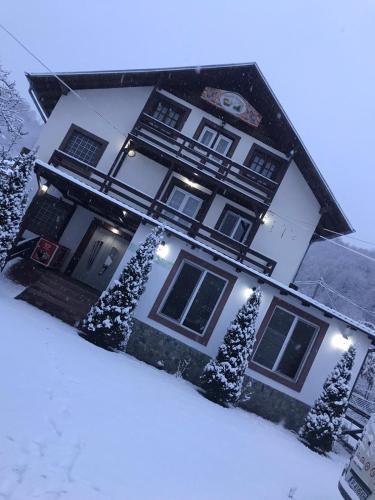 Casa Patrick - Accommodation - Sinaia