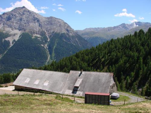 Alp Es-Cha Dadour - Accommodation - St. Moritz