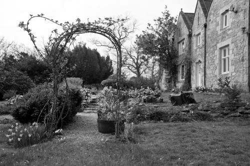 Tros Yr Afon Holiday Cottages and Manor House - Photo 7 of 82