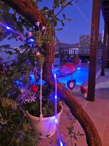 Villa Priene - Gumusluk Private Pool - Accommodation - Gumusluk