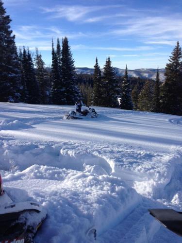 Wild Skies Cabin Rentals - Meeker, CO 81641