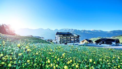 Alps Lodge Fiss