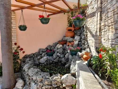 Casa Golfinho - Photo 3 of 58