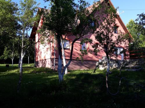 Biljevina - Apartment - Saborsko