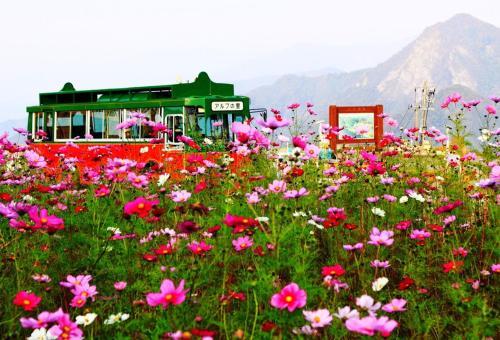 Angel Resort Yuzawa 808