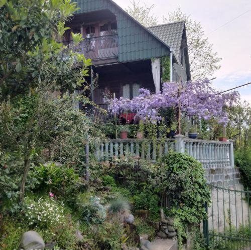 Holiday cottage in nature near the sea - Accommodation - Batumi
