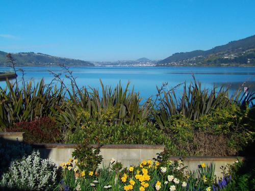 . Arts Content Harbour View