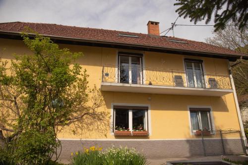 Ferienwohnung Wittenburg - Apartment - Oberdrauburg