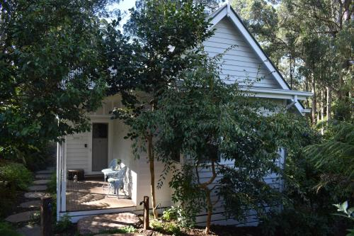 Merrow Cottages - Forest Edge - Accommodation - Mount Dandenong