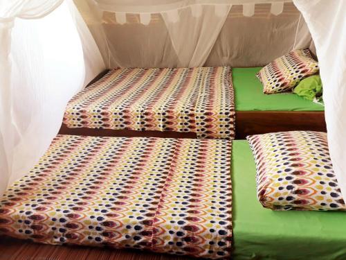 Alter Native Stay, Raja Ampat