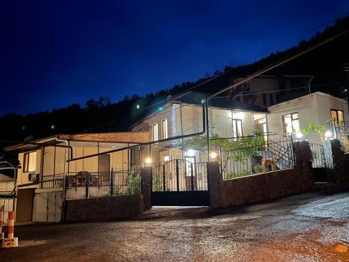 Luxury Apartment at Pirosmani 22 in central Borjomi
