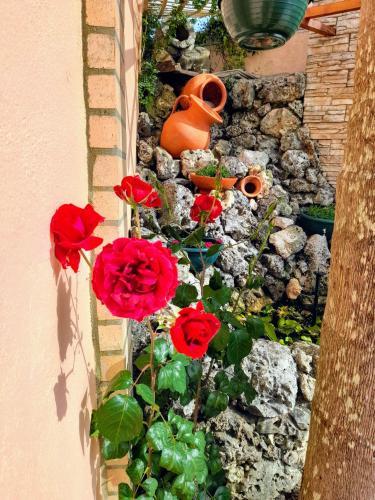 Casa Golfinho - Photo 2 of 58