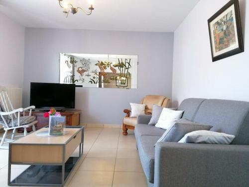 . Appartement Tarascon-sur-Ariège, 3 pièces, 4 personnes - FR-1-419-402
