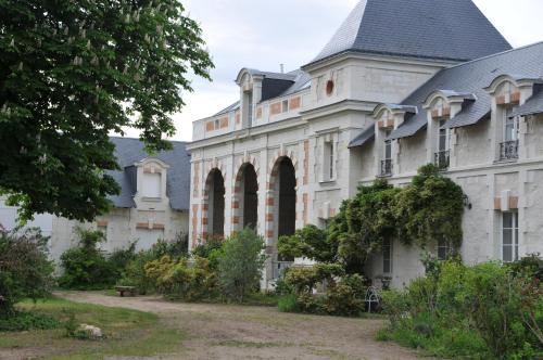 L'Orangerie du Château - Gîte Le Nid - Location saisonnière - Brain-sur-Allonnes