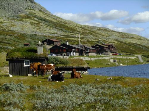 . Smuksjøseter Fjellstue