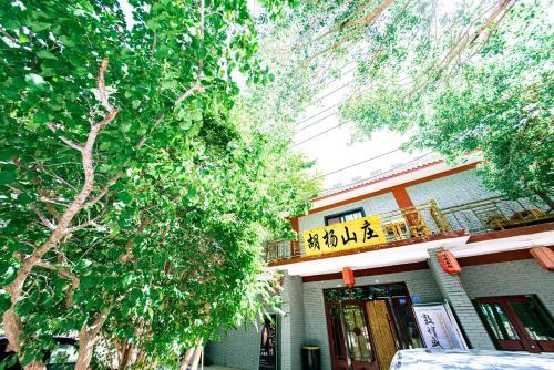Dunhuang Hu Yang Inn