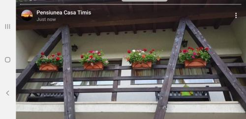 Duplex Suite Junior with Balcony