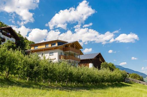 Frühaufhof - Apartment - Barbiano