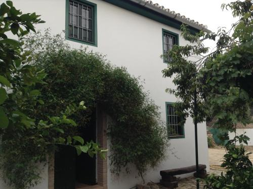 Casa Ginés - Accommodation - Cuevas de San Marcos