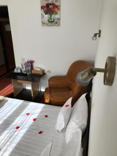 Hotel FLORA ALPINA - Azuga
