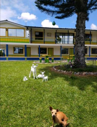 Villa Bernal