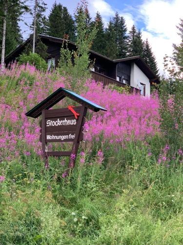 Stockerhaus - Apartment - Klippitztörl