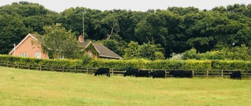 Yellowham Farm