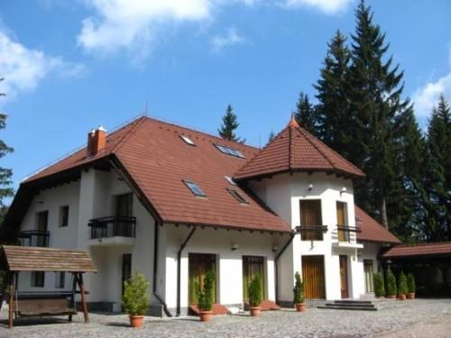 VILA DARIA - Accommodation - Poiana Brasov