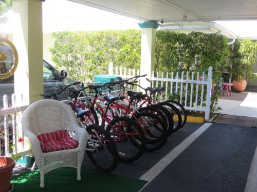Lemon Tree Inn - Naples, FL 34102