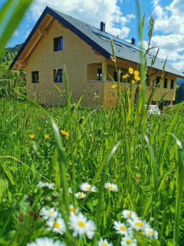 Living Apartment_2 - Hotel - Hittisau