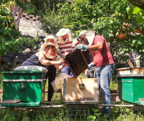 Armbee Honey Farm - Photo 5 of 24
