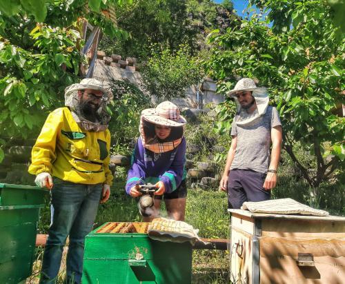 Armbee Honey Farm - Photo 6 of 24
